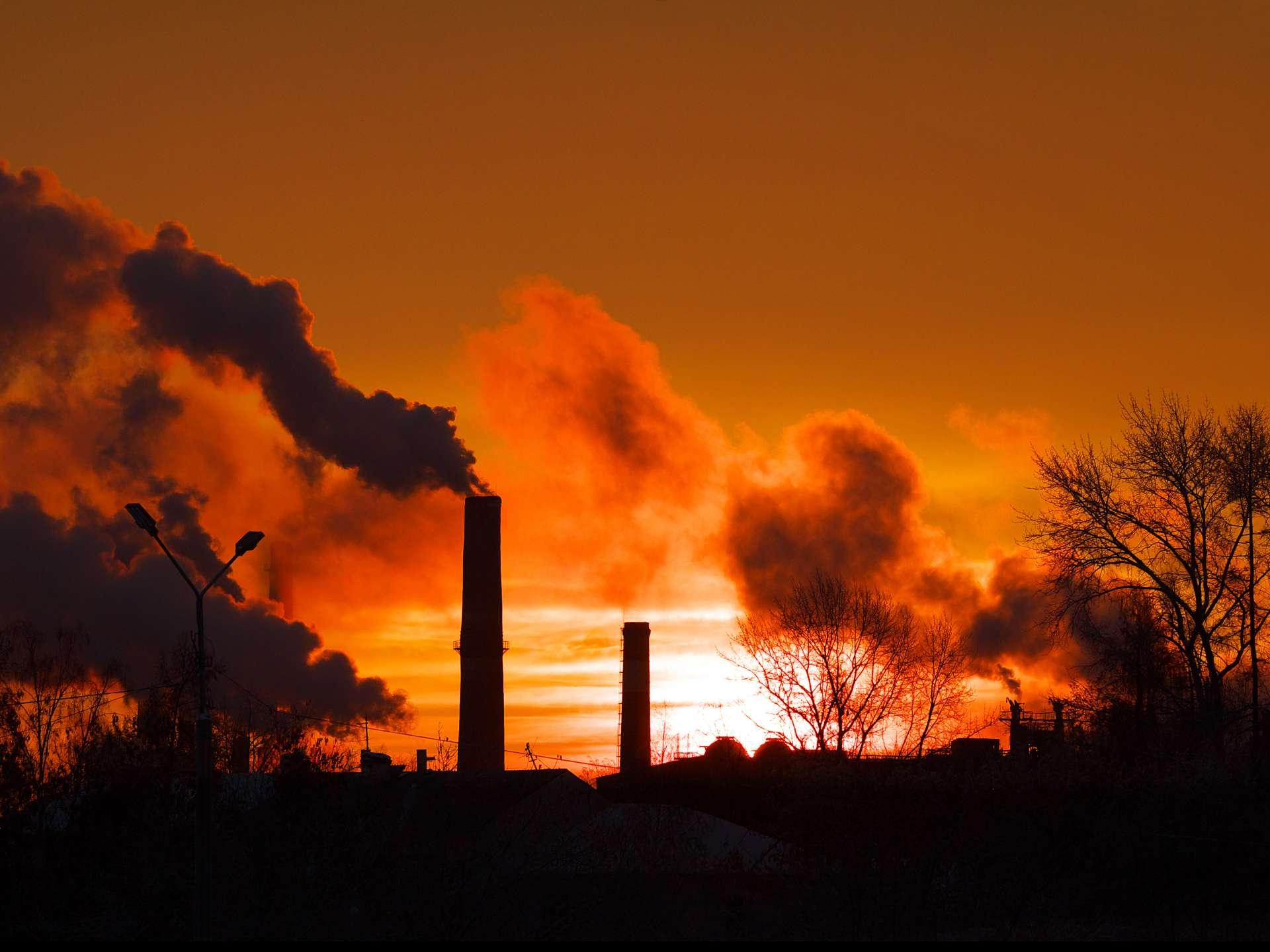 Milieuorganisaties: