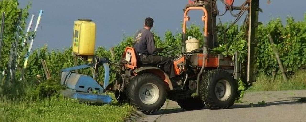 'Kanteling nodig voor duurzaam landbouwbeleid'