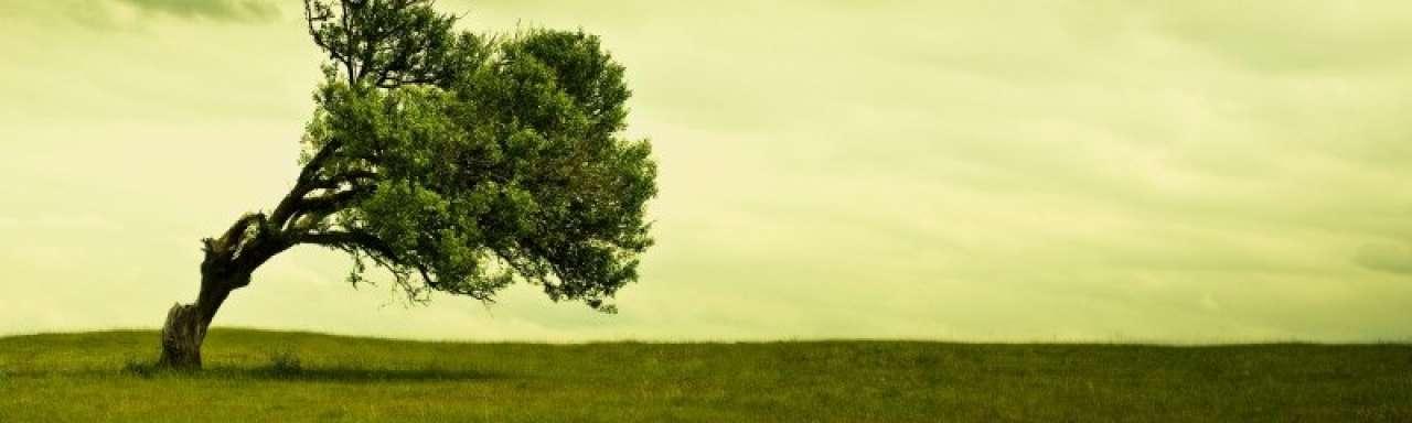 Multinationals falen in uitwerking duurzame ambities