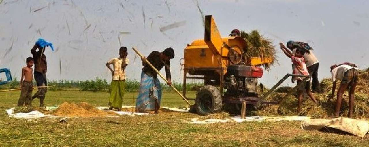 Dijksma: Actie voor duurzame landbouwontwikkeling