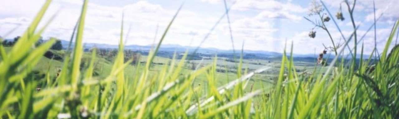 Samenwerking DSM en Rusland voor productie biobrandstoffen