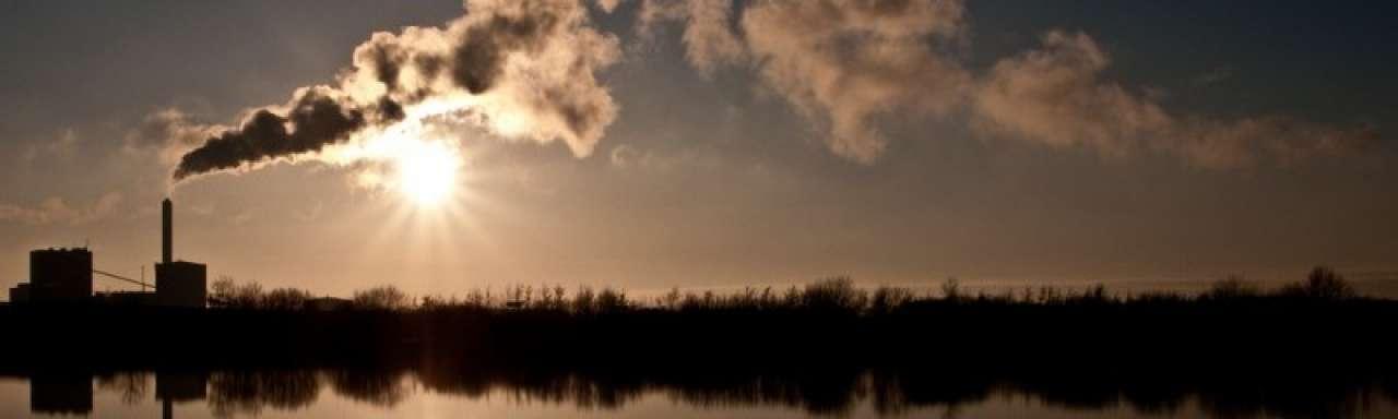 Hajer (PBL): 'Biomassa opstoken is zonde van het geld'