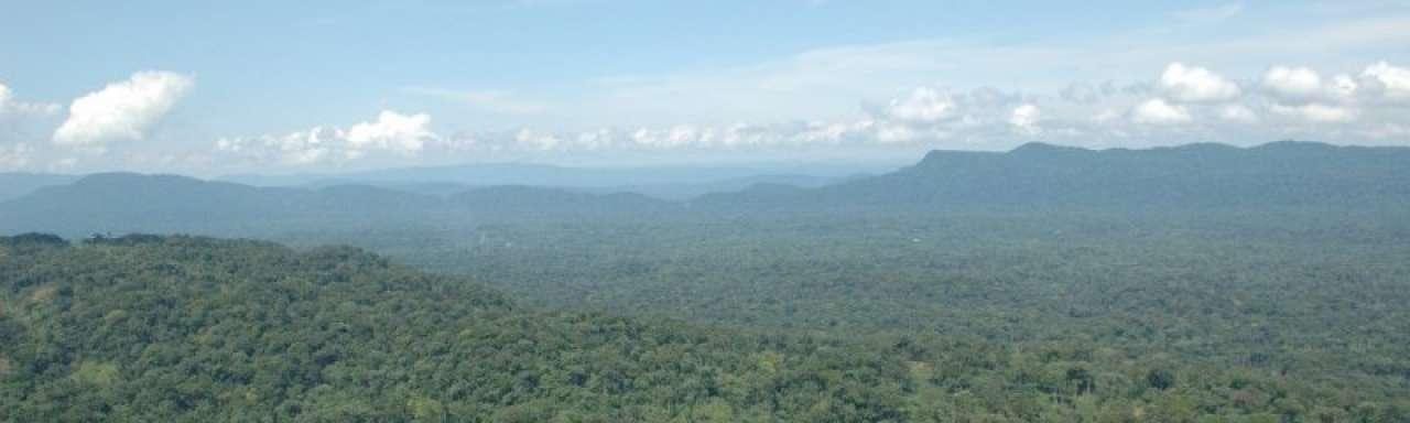 In de jungle van Congo schuilt de duurzame smartphone