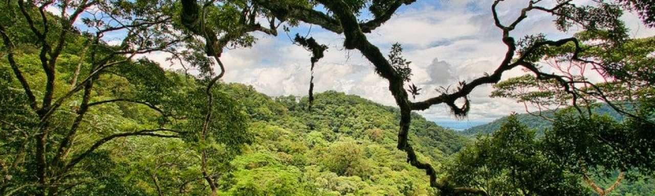 NASA: Tropische ecosystemen versterken opwarming aarde