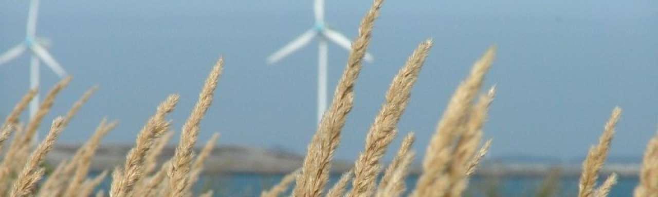 Banken openen deuren voor groene projecten