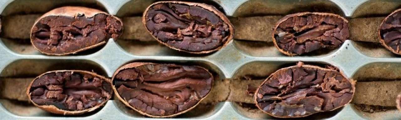 Chocolade verpakt in duurzaam choco-papier