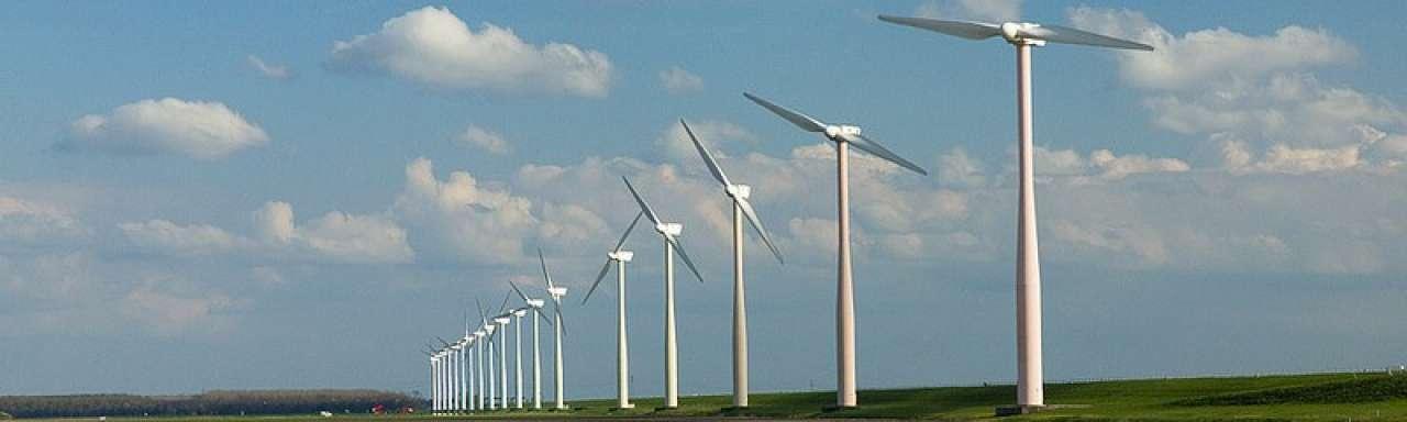 #DWARSBOOM: Raedthuys weet uit welke hoek de wind waait