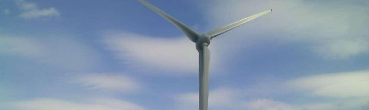 Startup De Windcentrale wint prijs voor duurzaamste technologiebedrijf