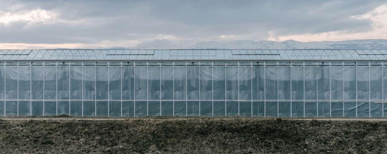 duurzame tuinbouw