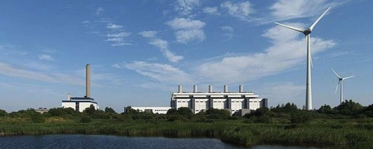 RvS wijst natuurvergunning kolencentrale Eemshaven af