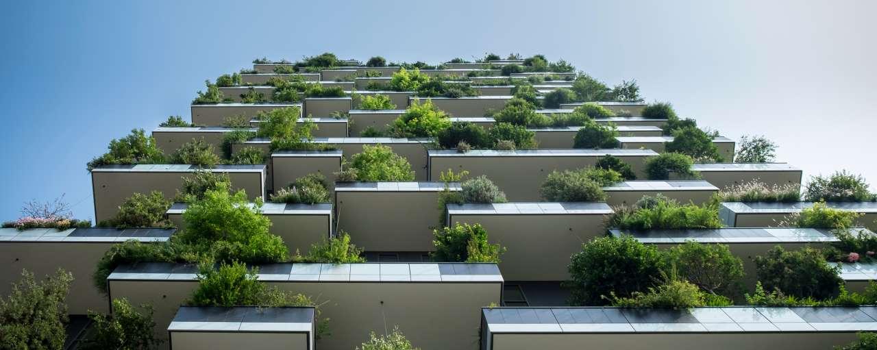 groene gebouwen duurzaam gezond