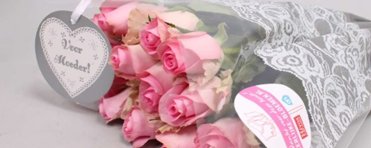 Hivos en Albert Heijn geven Ploumen bloemetje