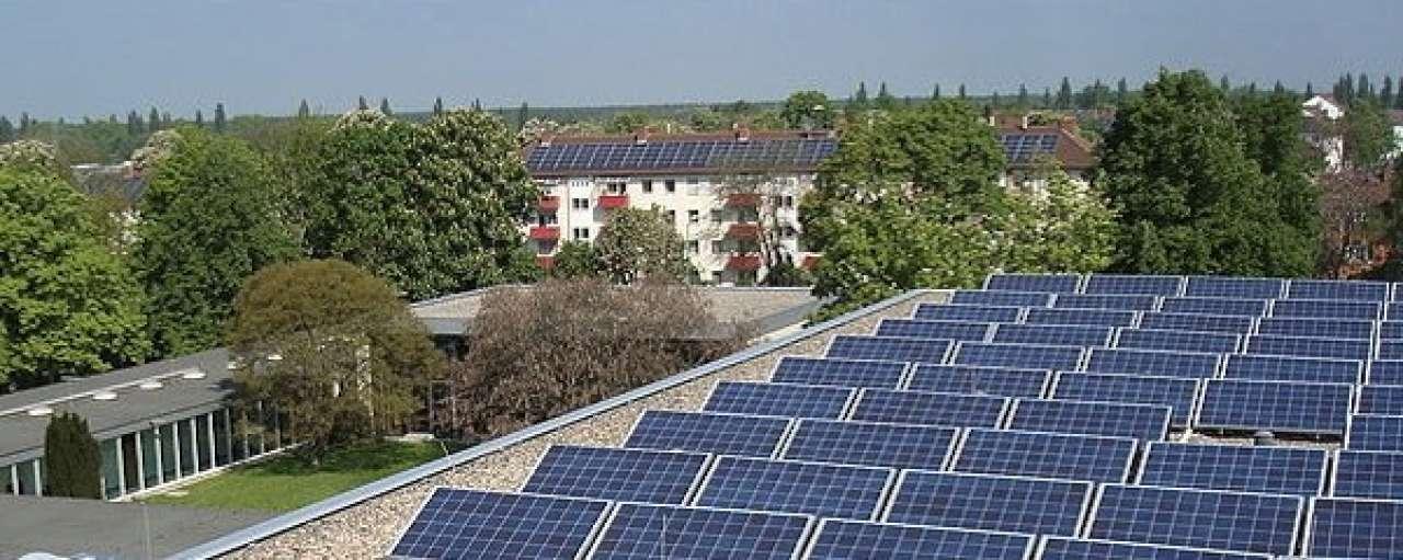 Koning houdt pleidooi voor duurzame energie