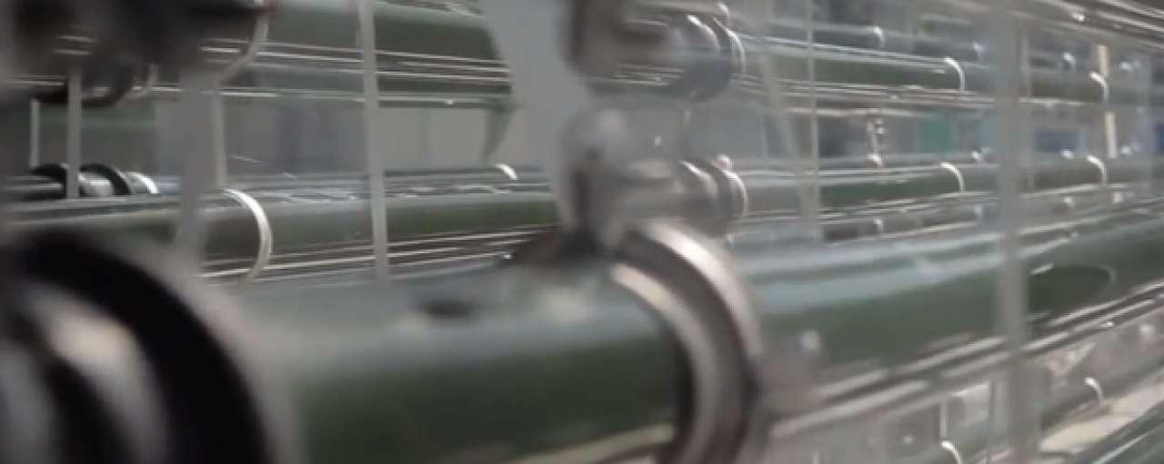 Algenindustrie bloeit op in Wageningen