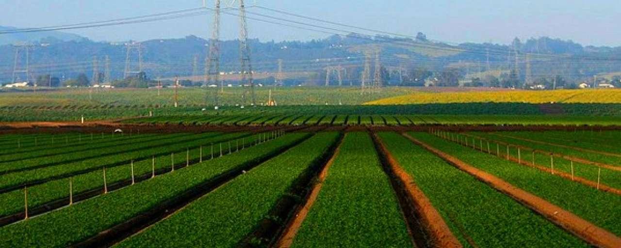 Landbouw kan 3 miljard extra mensen voeden