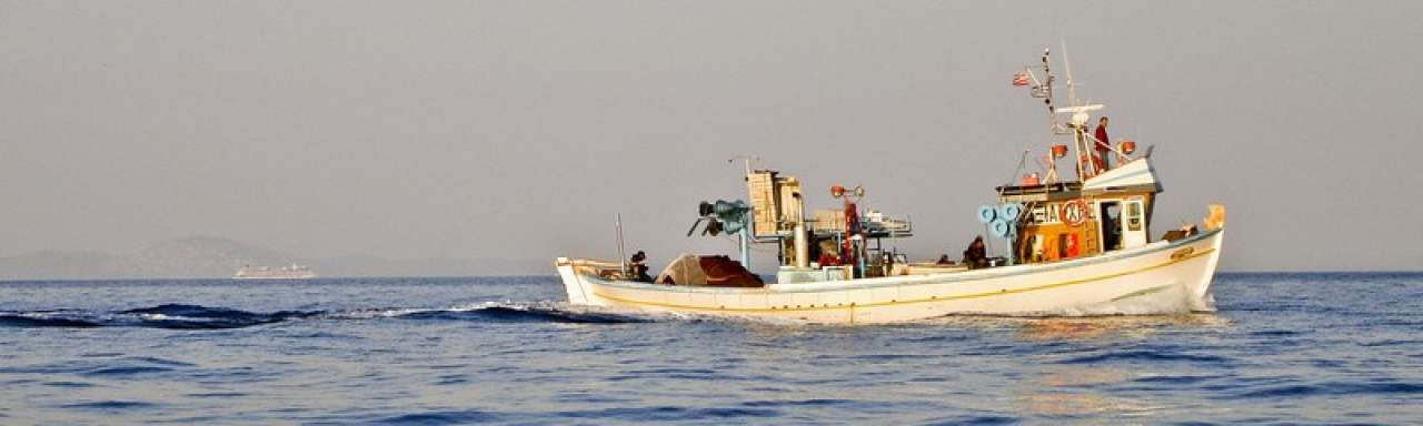 Duurzame visserij kan vijf keer zo veel opbrengen