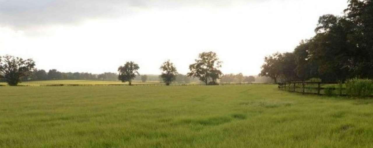Aantal duurzame boeren in EU vertienvoudigd