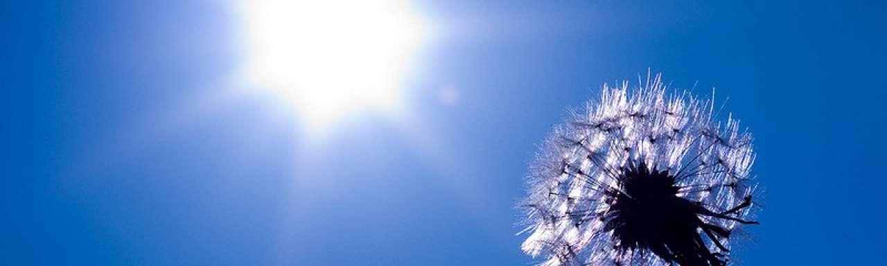 Overschot zonnestroom vaak volledig vergoed