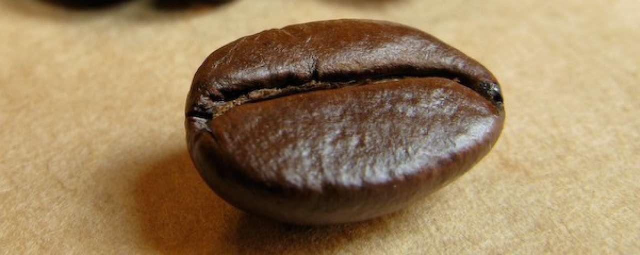 Aandeel duurzame koffie stijgt tot 50%