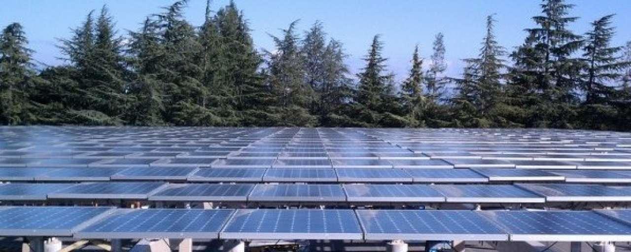 Citigroup: vlucht zonne-energie gedreven door businesscase