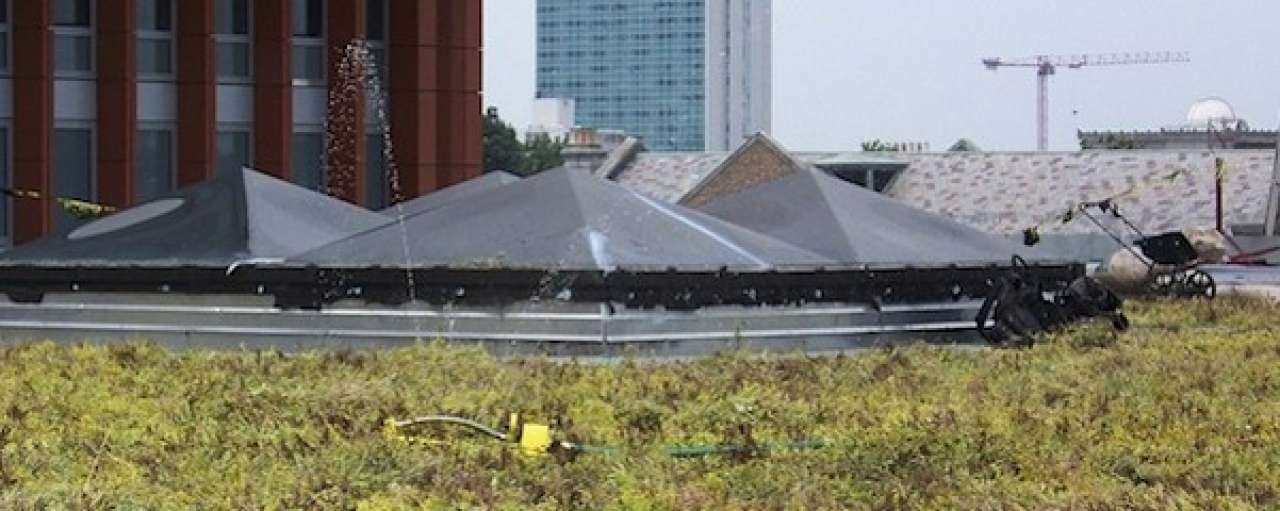 Forse kostendaling groene daken voorspeld