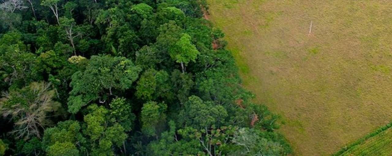 Unilever maakt landbouwketen transparanter