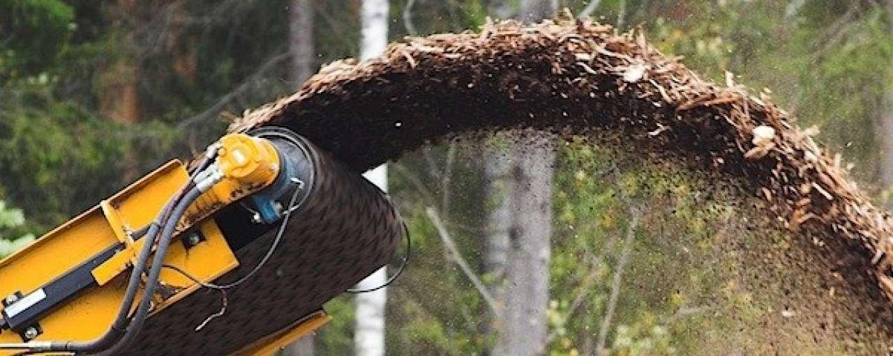 Rol biomassa groeit in energiemix