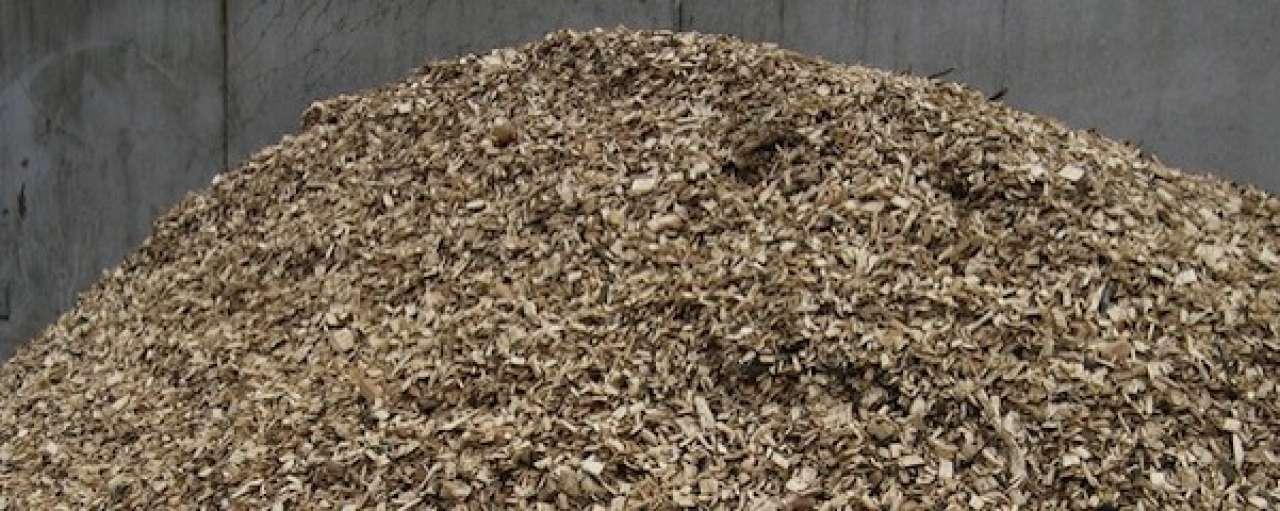 Eerste klant voor kenniscentrum biomassa