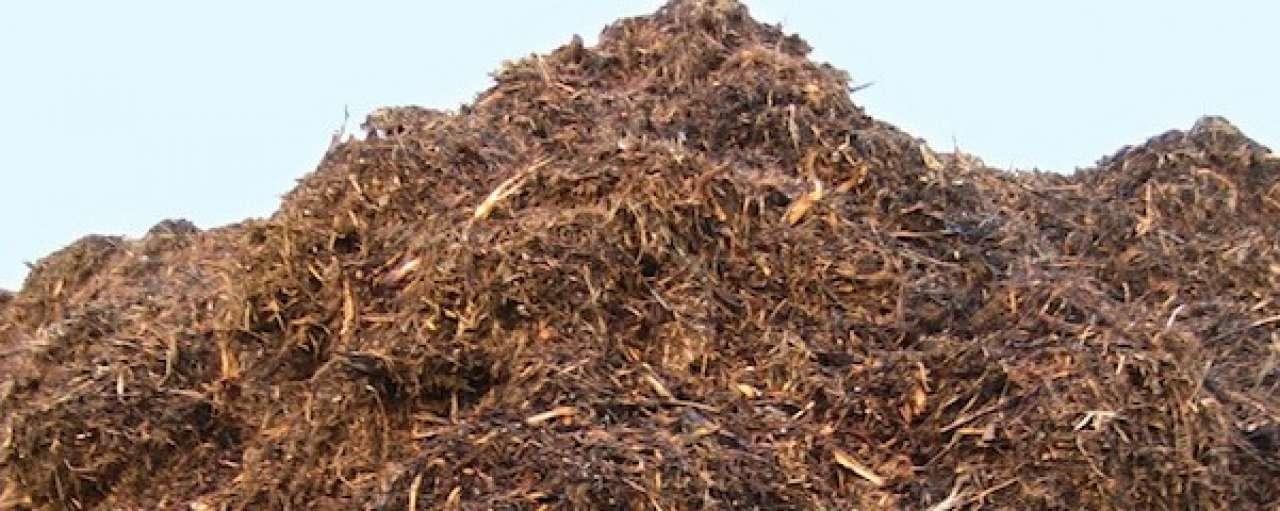 'Debat over biobrandstoffen vergiftigd'