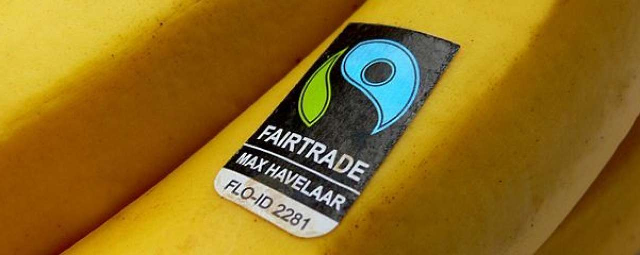 38% groei verkoop Fairtrade producten