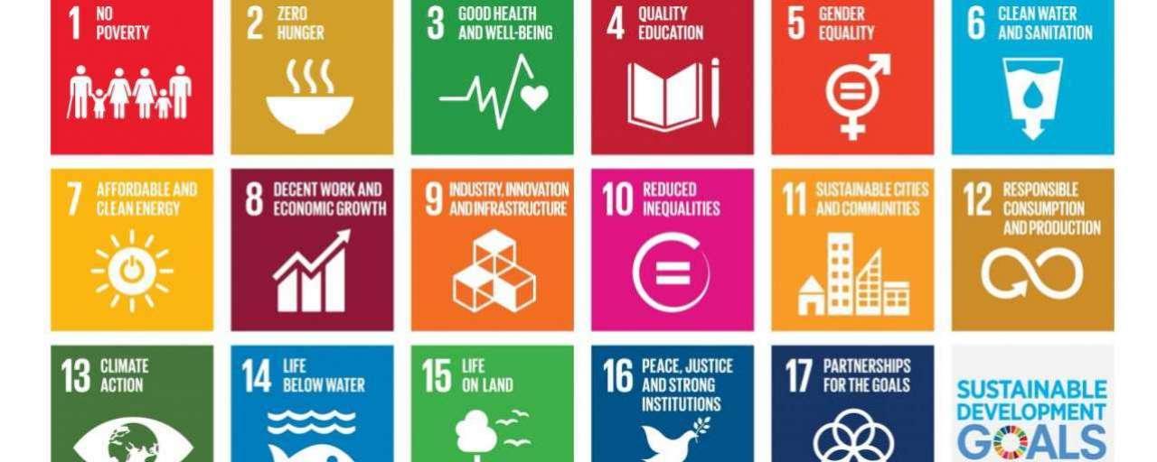 sustainable development goals, SDGs, SDG