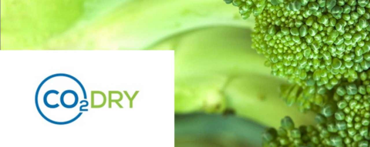 CO2Dry finalist voor Groene Tulp met duurzaam drogen