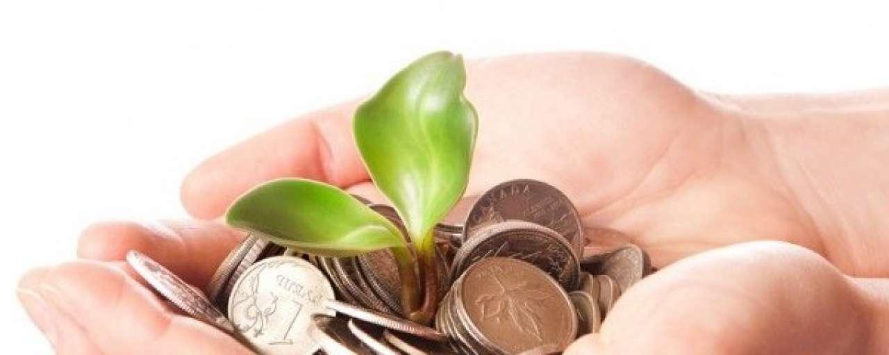 Verschillen duurzaamheidsbeleid verzekeraars groter