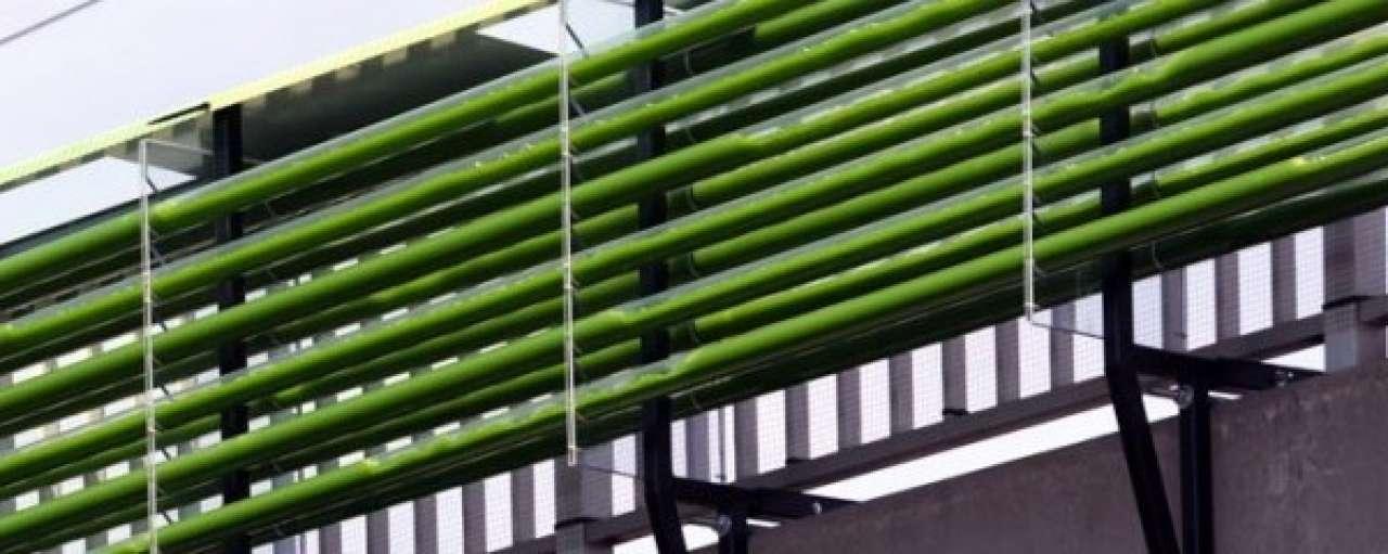 Algenfarm boven snelweg eet CO2-uitstoot