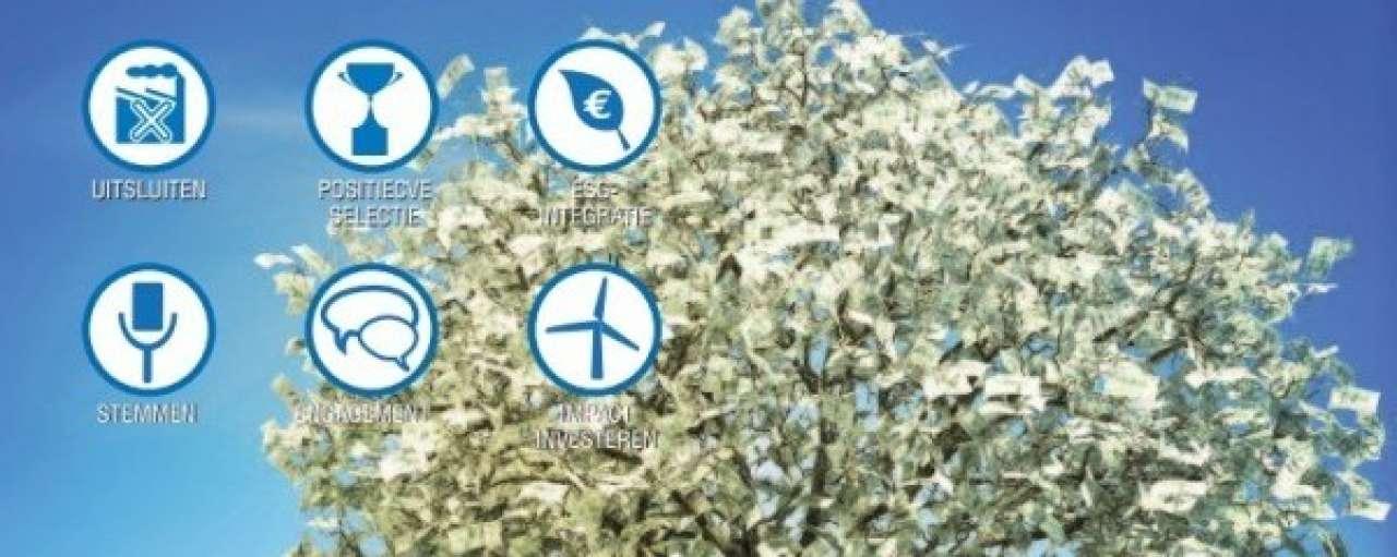 Duurzame beleggingsproducten in de lift