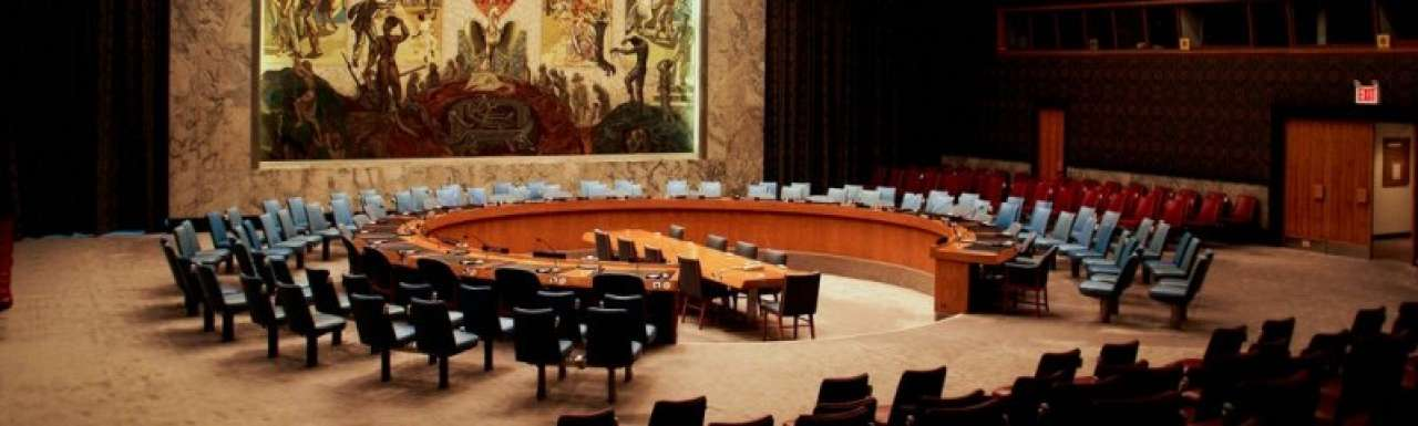 CEO Unilever enige bedrijfsman in VN-panel
