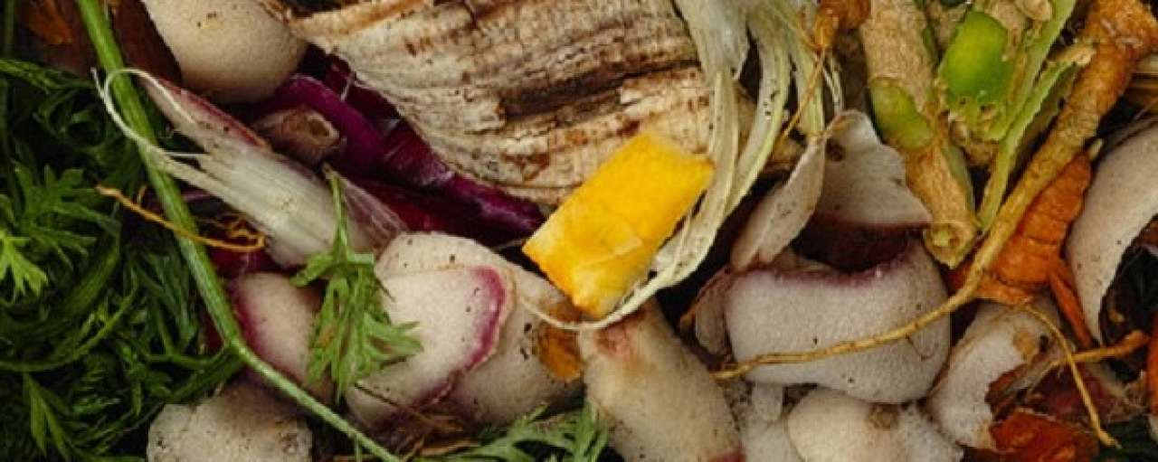 Intelligente compostbak reduceert voedselverspilling