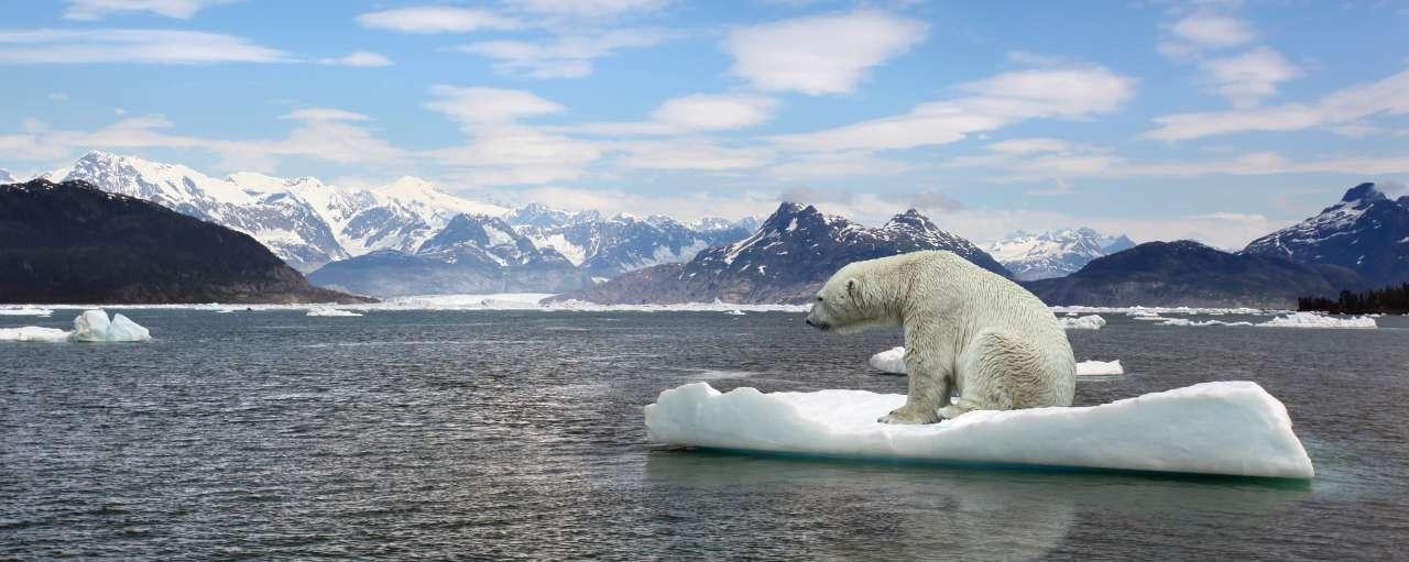 banken, impact, klimaatverandering
