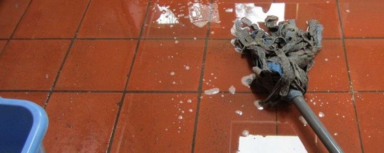 Grootste zorgverlener België poetst met Ecover