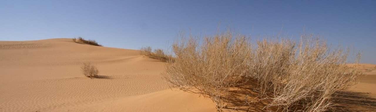 Abengoa maakt zoetwater met zonne-energie