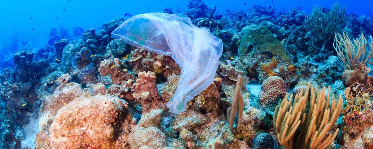 Microplastics vervuiling