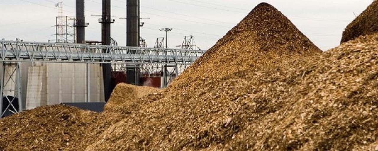 Bacterie en stikstofgas leveren goedkope ethanol