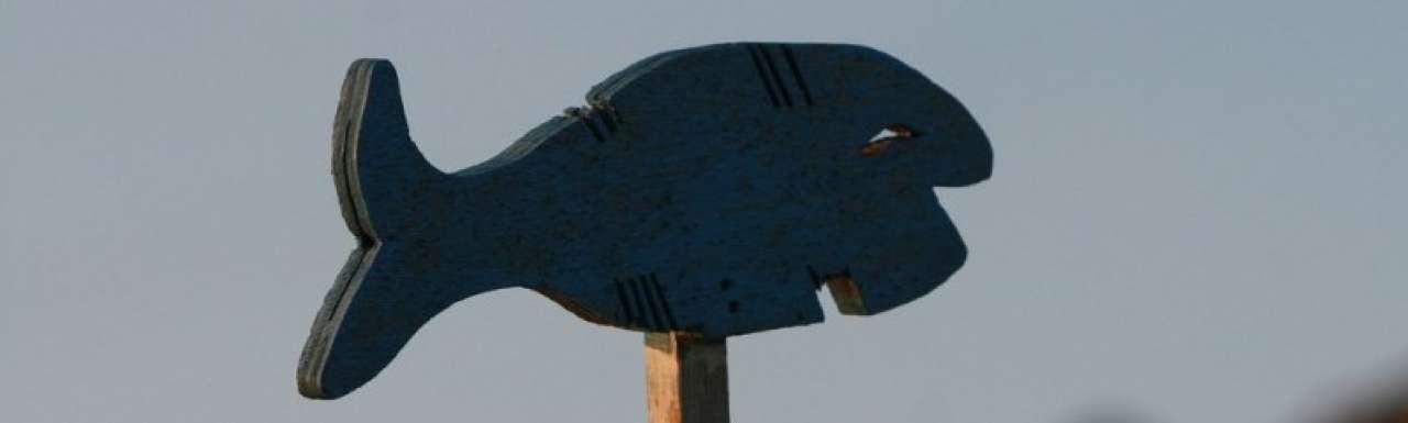 Keurmerk duurzaam gekweekte vis gelanceerd