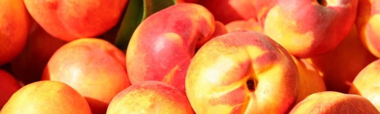 Perziken, fruit