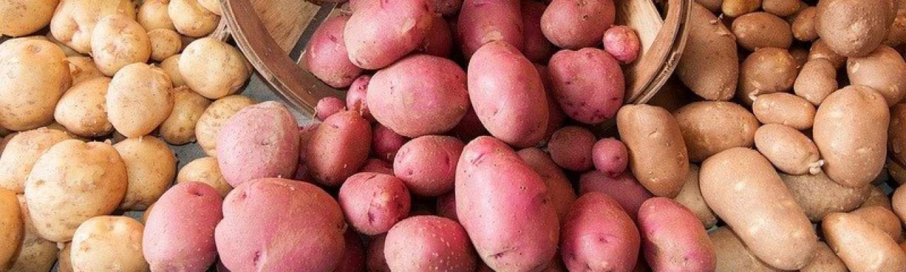 Biologische aardappel