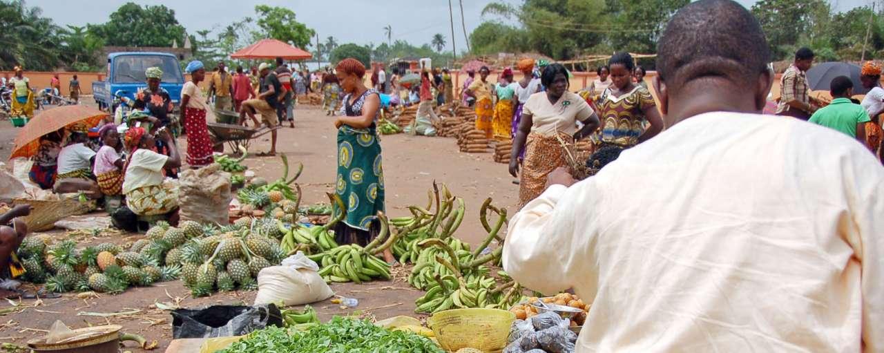 Nigeria Alfa Life biologische kunstmest