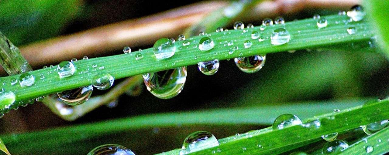 water oogsten uit buitenlucht