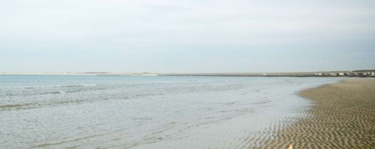 Jonge ondernemers gezocht voor duurzame exploitatie Noordzee