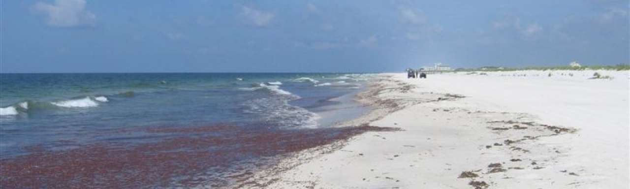 Pakkans nihil, maar olielozingen in Noordzee nemen af